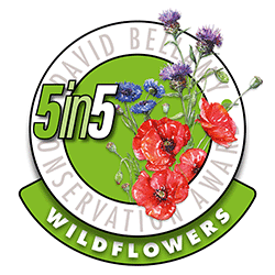 David Bellamy 5 in 5 Wildflowers Conservation Award